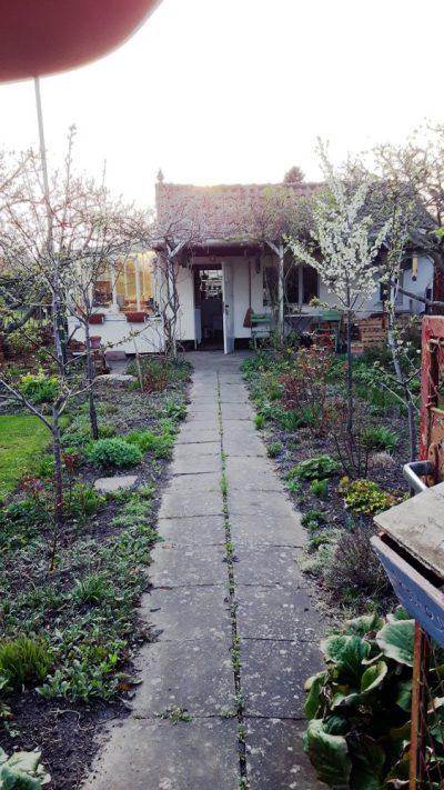 Unser alter Gartenweg